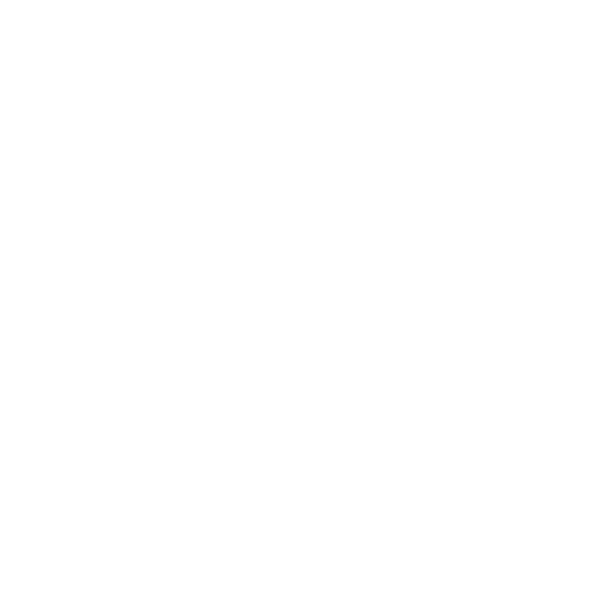Autolign Inspections